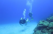 scuba-diving-subic-bay-mangos-dive-center (3)