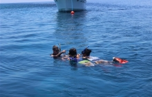 scuba-diving-subic-bay-mangos-dive-center (9)